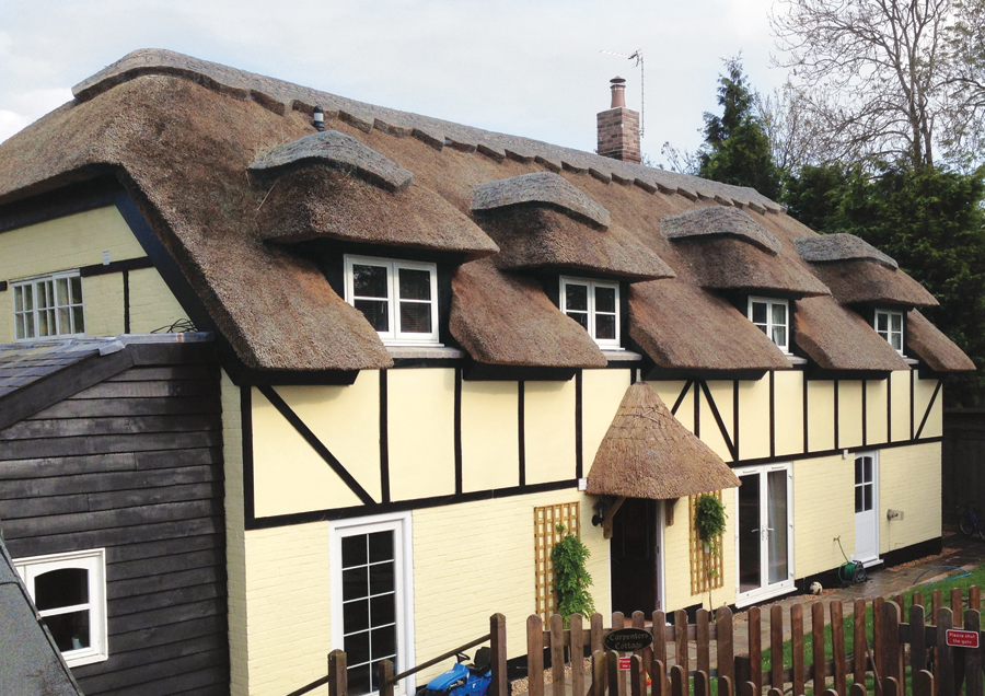 Design, Materials And Unusual Thatch